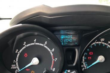 New Fiesta Hatch
